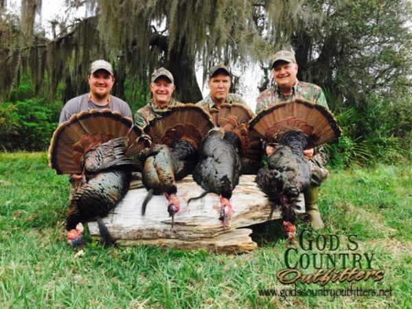 Florida turkey Hunt