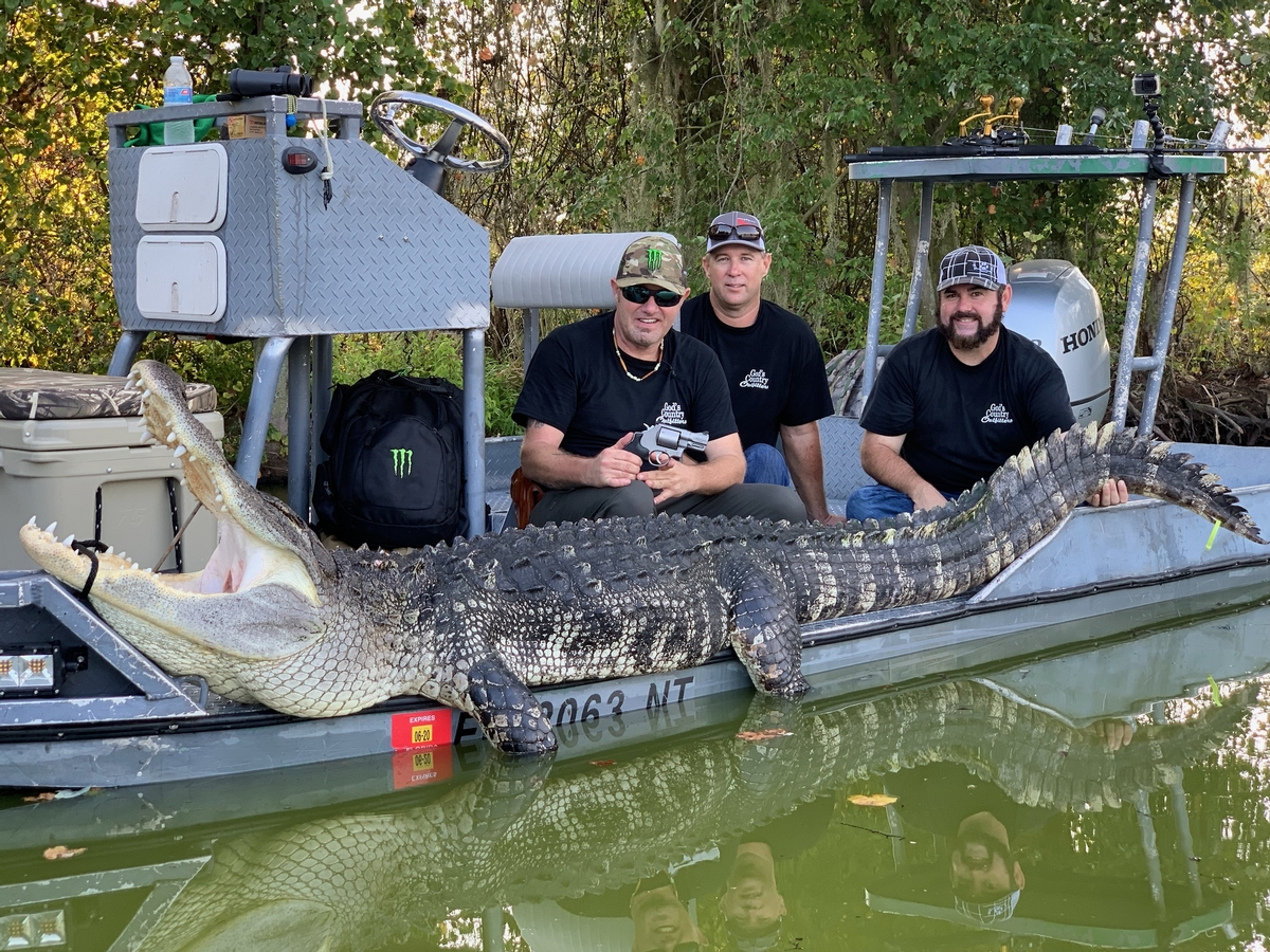 Private land One Day Guided Alligator Hunts / Night Alligator Hunts
