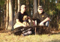 Hog hunting photo gallery from God's Country Outfitters. God's Country Outfitters (GCO) is owned and operated by good country people that love to hunt Florida hog's just as much as you do.